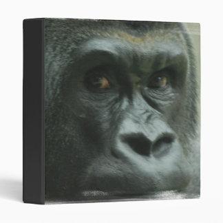 Gorila en la carpeta de la niebla
