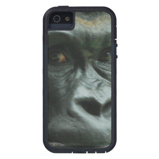 Gorila en la niebla funda para iPhone 5 tough xtreme