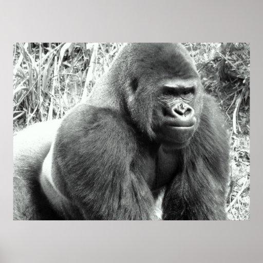 Gorila en poster blanco y negro
