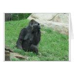 Gorila Felicitacion
