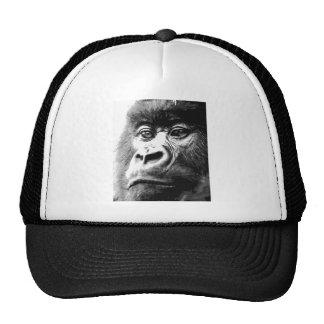 Gorila Gorro