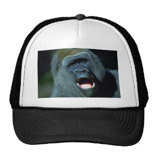 Gorila Gorros