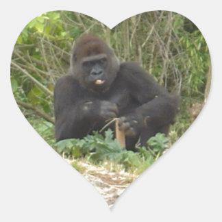 Gorila gruñón calcomania de corazon
