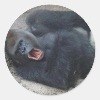 Gorila gruñón pegatina redonda