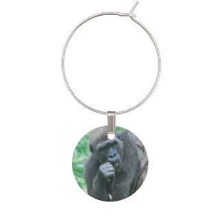 Gorila Identificadores De Copas