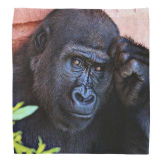 gorila impresionante 1215P Bandanas