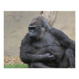 gorila impresionante perfect poster