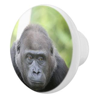 gorila impresionante pomo de cerámica