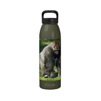 Gorila masculino de la tierra baja del Silverback  Botellas De Agua Reutilizables