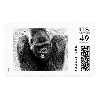 Gorila masculino del Silverback de la tierra baja, Estampillas