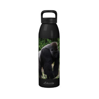 Gorila masculino down.jpg principal que camina del botella de agua reutilizable