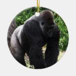 Gorila masculino down.jpg principal que camina del ornatos