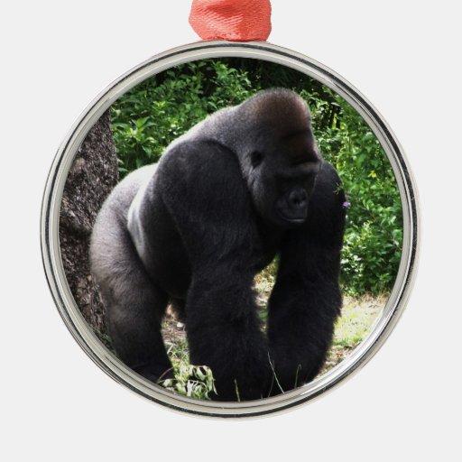 Gorila masculino down.jpg principal que camina del adorno redondo plateado