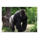 Gorila masculino down.jpg principal que camina del tarjeta