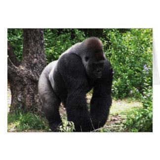 Gorila masculino down.jpg principal que camina del tarjeta pequeña