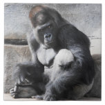 Gorila masculino que mira una polaina azulejo