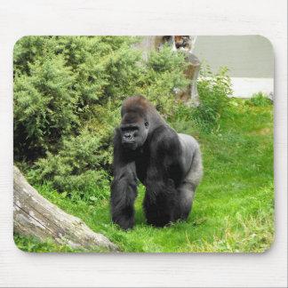 Gorila occidental del varón del silverback de la t alfombrillas de ratones