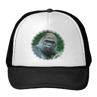 Gorila perplejo gorras