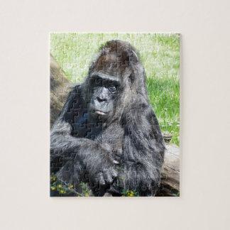 Gorila Rompecabeza