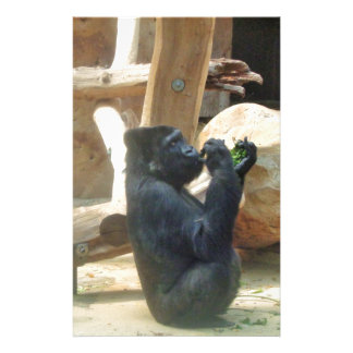 Gorila que come su almuerzo, animal, fauna, mono papeleria personalizada