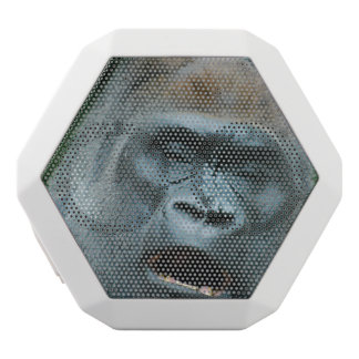 Gorila que habla
