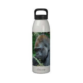 Gorila severo botella de beber