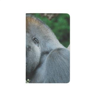 Gorila severo cuadernos