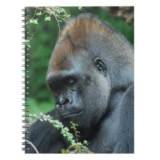 Gorila severo libreta espiral
