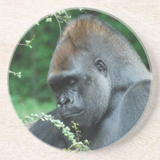 Gorila severo posavasos personalizados
