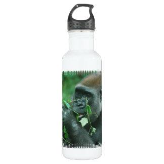Gorila Snacking