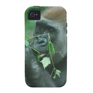 Gorila Snacking iPhone 4/4S Carcasa