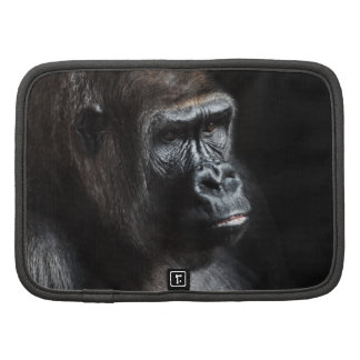 Gorila solo planificador