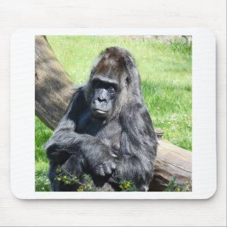 Gorila Tapetes De Raton