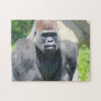 Gorila trasero de la plata rompecabeza con fotos