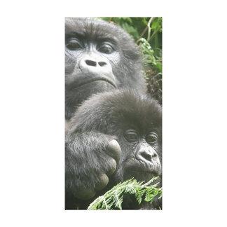 Gorila y bebé de montaña 20 x 40 adentro. Lona Impresion De Lienzo