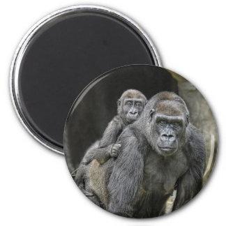 Gorila y imán del bebé