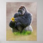 Gorila y margarita amarilla póster