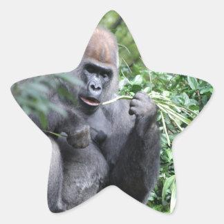 gorilas del silverback colcomanias forma de estrellas