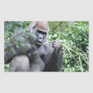 gorilas del silverback etiquetas