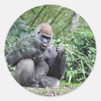gorilas del silverback pegatina redonda