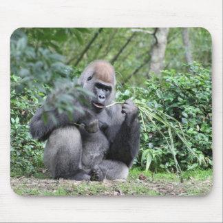 gorilas del silverback alfombrillas de ratón