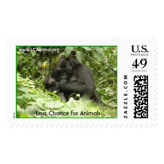 Gorilas del Ugandan Sellos