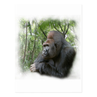 gorilla2 postales