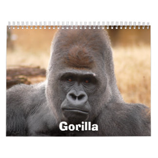 Gorilla_018, Gorilla Calendar