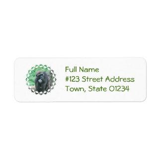 gorilla-107.jpg return address label