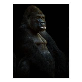 gorilla-625286 THOUGHTFUL GORILLA WILD ANIMAL DIGI Postcard