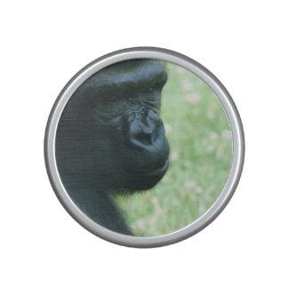 gorilla-65.jpg bluetooth speaker