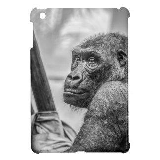Gorilla-66581 triste