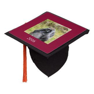 gorilla 7152 graduation cap topper
