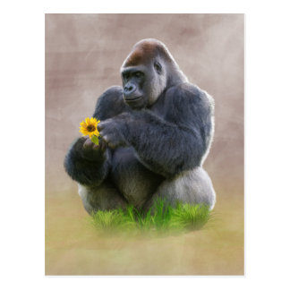 Gorilla and Yellow Daisy Postcard